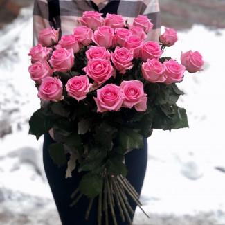 25 Pink Roses foto