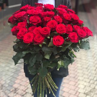 51 Красная роза 70-80 см