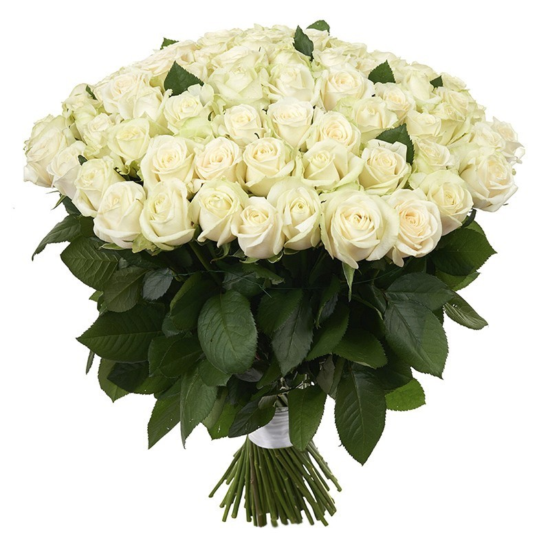 Buy 101 White Roses With Delivery Chisinau Moldova