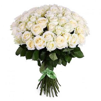 51 de Trandafiri Albi