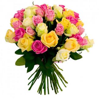 25 de Trandafiri Asortați