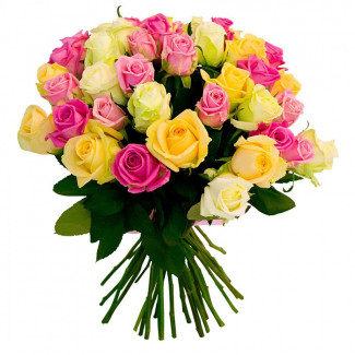 25 Assorted Roses